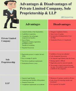 Pte Ltd Company Pros Cons
