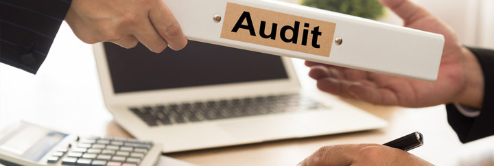 Audit Quotation Purchase System And Audit On Purchases Audit