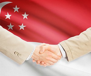 Get to Know How You Can Incorporate a Private Limited Company in Singapore