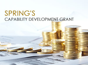 SPRING-Capability-Development-Grant