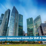 Top 7 Government Grants for Singapore Companies