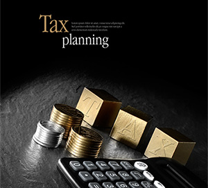 Taxation Planning For the Business